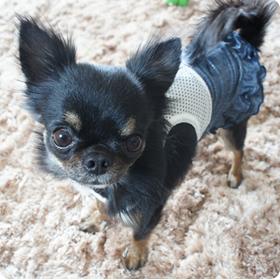 デニムホイルプリントインナー付スカート