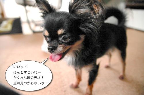 Ichi 24893