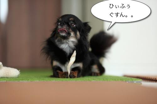 Ichi 25243