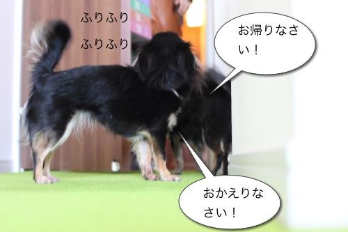 Ichi 26593